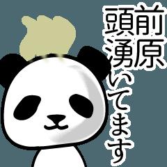 前原■面白パンダ名前スタンプ