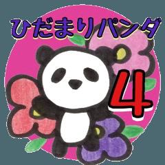 ひだまりパンダ4th