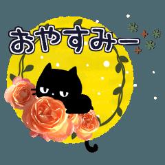 黒ねこと薔薇の花♥毎日使える基本セット