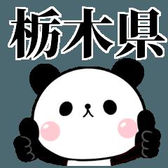 栃木弁 無表情パンダ