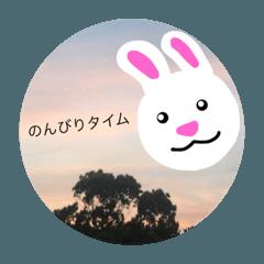 ウサギの愉快な1日