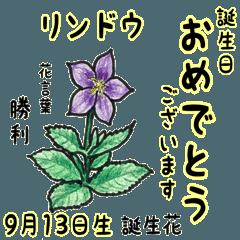 9月、誕生日ごとの誕生花と花言葉。