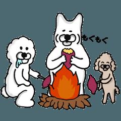 柴犬の仲間達 秋