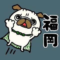 福岡のパグさん