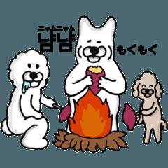 韓国語と日本語を話す柴犬と仲間たち 秋