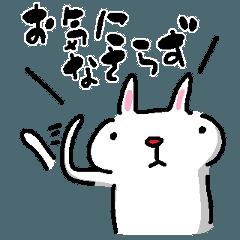 物腰の柔らかいウサギ