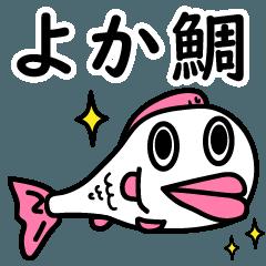 よか鯛★釣り人との闘い