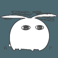 目力のあるウサギ5