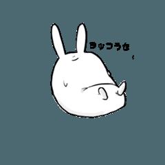 勤勉なウサギ3