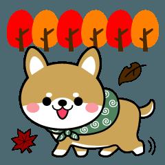 豆柴の秋に使えるスタンプ【柴犬】