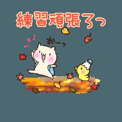 ねこぴよバドミントン 【秋~冬】