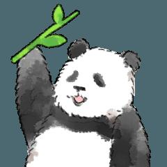 笹食う?パンダ2