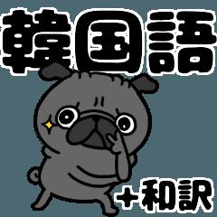 韓国語と日本語 黒パグさん