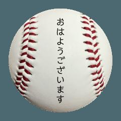 Baseball Club③