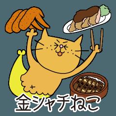 金シャチねこ(名古屋弁)