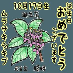 10月、誕生日ごとの誕生花と花言葉。