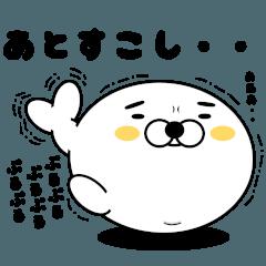 お眉毛アザラシ【無難編】