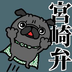 宮崎弁 黒パグさん