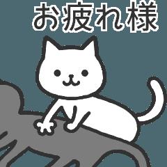 よくあるネコ ▶