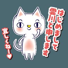 雲川さん家の猫です