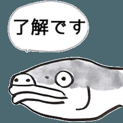 比較的ゆるめな魚と動物たち図鑑(了解編)