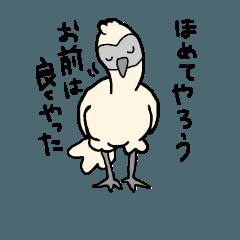 にわとり(あるいは烏骨鶏)2