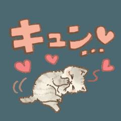 可愛い子猫のでか文字スタンプ