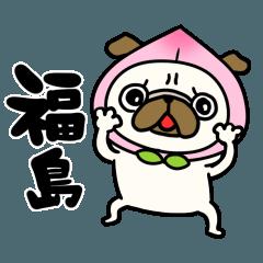 福島のパグさん
