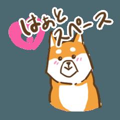 大切な人へこゆきからのメッセージ♡啓発編