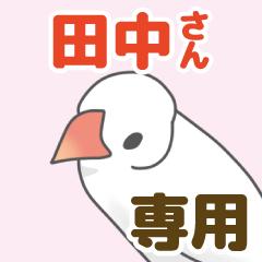 【田中専用】文鳥さんスタンプ