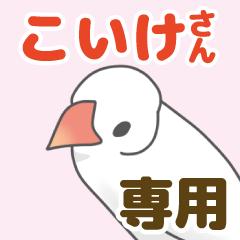【こいけ専用】文鳥さんスタンプ