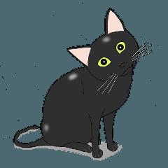 うちねこ物語 〜黒猫の巻〜