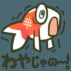 山口弁まる出し金魚!