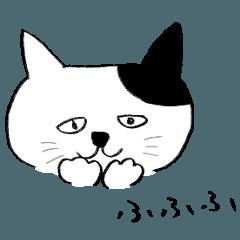 帽子をかぶってる風のネコ