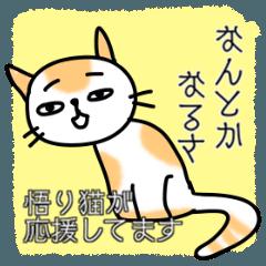 悟り猫【応援してます】