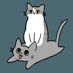 [LINEスタンプ] 姉弟猫のスタンプの画像(メイン)