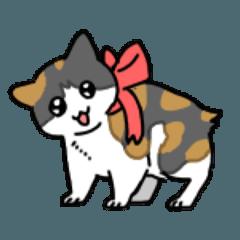 [LINEスタンプ] 3匹のかわいいネコたち