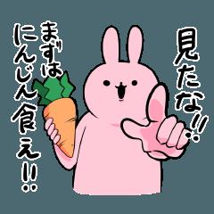 ひみつのうさぎ USG