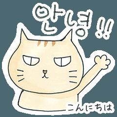 日常で使える韓国語 日本語訳付き