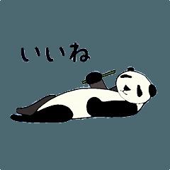 パンダ集め