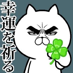 目ヂカラ☆にゃんこ14【応援】