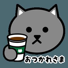 かわいいグレー猫の顔