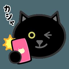かわいい黒猫の顔