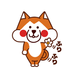 柴犬 日の丸くん  【日常編】