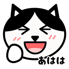 かわいい黒白猫の顔2