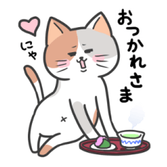 [LINEスタンプ] みんな猫だニャー♪