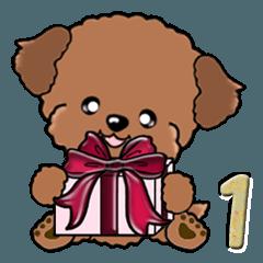 [LINEスタンプ] 【大きめ文字】トイプードルかな? vol.1