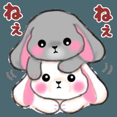 [LINEスタンプ] たれ耳うさぎさん☆ホーランドロップイヤーの画像(メイン)