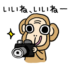 [LINEスタンプ] フォト猿