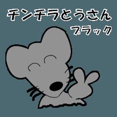 チンチラとうさん(クロ)